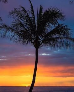 Love the simple things in life.  #hawaii #paradise #aloha #clarklittle