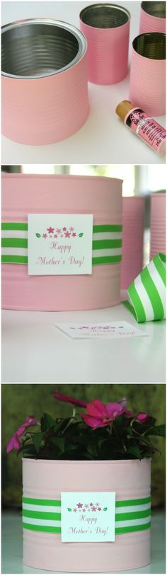 Painted tin cans have been filled with fresh flowers for a quick, last minute Mother's Day Gift.