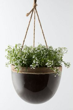 Sexy, sophisticated planter that could work for a girl or a glam guy!    Mulberry Hanging Planter  $49.95  Anthropologie