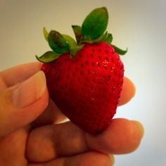 Fresh strawberries? Yes, please! ❤️ Copyright © 2014 Tofu Fairy's Brain Pile - All Rights Reserved