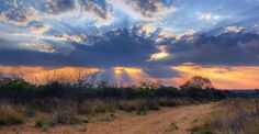 Crepuscular rays over Waterberg plateau