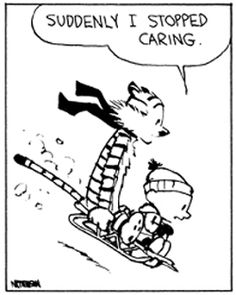 Calvin and Hobbes - suddenly I stopped caring.