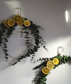 I love these Eucalyptus and Orange wreaths I made. Every time I walk by them the smell is wonderful. Christmas Tree Dress, Christmas Crafts, Christmas Decorations, Christmas Ideas, Happy Winter Solstice, Prom Decor, Eucalyptus Wreath, Fall Wreaths, Summer Wreath