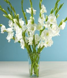 Love the simplicity of just glads for altar arrangements.