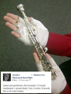 Note the head joint.  This is what happens when a flute and a trumpet hook up! :-P