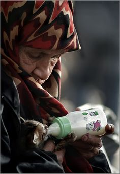 A mendicant woman as a wet nurse in Beyazit Square - Istanbul, Turkey. Animal welfare and compassion.