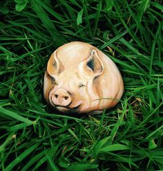 Painted pebble of Pig