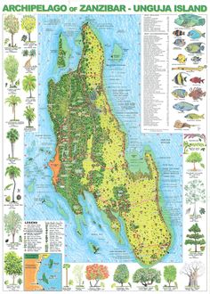 Zanzibar Maps Pinterest Tanzania Wanderlust and Africa