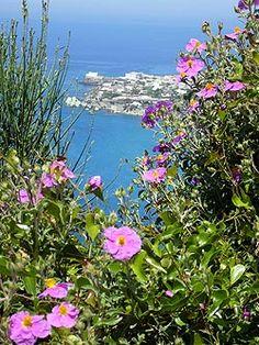 Ischia - Panza: Punta Imperatore mit Forio