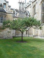 Isaac Newton - Wikipedia, the free encyclopedia