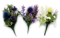 Google Image Result for http://www.thistleflowers.com/products/buttonholes_corsages/buttonholes_FOSrange_group.jpg