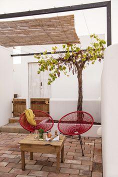 Pour le petit patio de mon appartement dans maison de pêcheur au Mourillon ❤