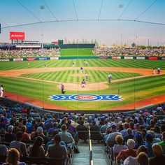 We are counting down the days until the World Champion Chicago Cubs return to their Spring Training home at Sloan Park Mesa ⚾️