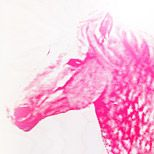 pink horse, love it.