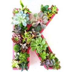 Succulent Monogrammed Planter Box by Rooted in Succulents