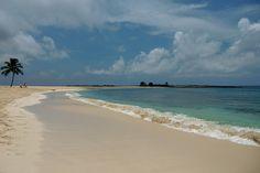 Strand beim Hotel Atlantis Miami, Washington, Bahamas, New York, Atlantis, Strand, Beach, Water, Outdoor