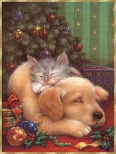 Chiot et chaton de Noël