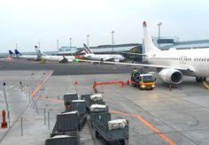 N? er flyselskapene endelig p? Tripadvisor