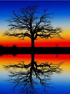 Trees represents Life.... Family....Foundation....Community