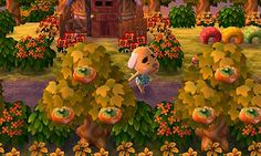 1211am:  Currently adding more sweet olive bushes/persimmon trees/autumnal colored flowers around my town to match with the changing colors. I'm really loving fall so far!