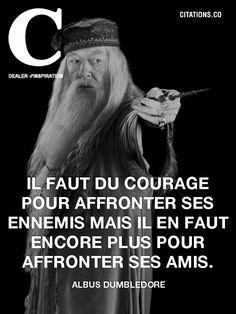 Albus dumbledore a une citation pour nous Twilight Harry Potter, Harry Potter Quotes, Harry Potter Love, Harry Potter Characters, Harry Potter World, Hp Quotes, Jokes Quotes, Movie Quotes, Citations Hp