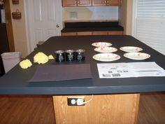 DIY Kitchen Renovations ~ Resurface Countertops