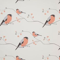 Shop for bird and foliage fabric for your home by UK designer Lorna Syson. British inspired Bullfinch and Wildlife fabric exclusive designs for bedroom, kitchen or any living space. Wildlife Wallpaper, Bird Wallpaper, Kitchen Wallpaper, Wallpaper Samples, Bird Painting Acrylic, Painting Tips, Diy Bird Bath, Bullfinch, Bird Silhouette