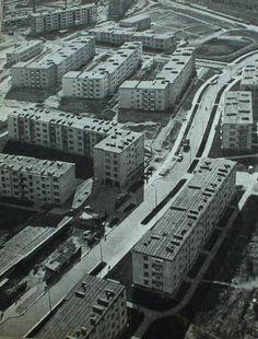 ul. Grażyny, w górze ul. Wieleńska źródło; Zegarkowy