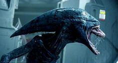 4 Reasons the US Space Force Might Be Necessary - Tech Theorist Michael Fassbender, Alien Vs Predator, Alien Covenant, The Covenant, Prometheus Movie, Prometheus 2012, Science Fiction, Dragons, Best Action Movies