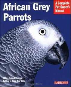 African Grey Parrot | African Grey Parrots: Everything About History, Care, Nutrition ...