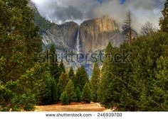 Yosemite Stock Photos, Images, & Pictures | Shutterstock