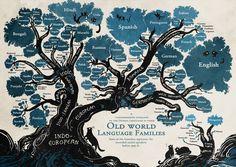 albero lingue