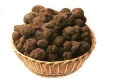 Truffles....