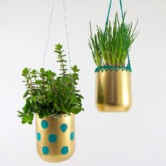 Make hanging plant-pots out of plastic bottles and you´ll always have fresh herbs handy! (in German with step-by-step photo tutorial)