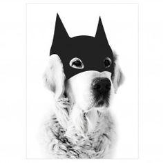 Affiche Batdog