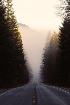 """wemightdietomorrow: """"""""If you don't know where you are going, any road will get you there."""" - Lewis Carroll """""""
