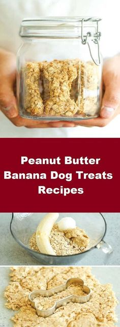 All you need is 4 ingredients for these Peanut Butter Banana Dog Treats Recipes! And the coconut oil makes these so HEALTHY for your pup! I have been obsessed with coconut oil lately. I know, I'm a little late to the coconut oil trend but better late than never, right? I use it in all of my cooking, but more importantly, it's a godsend for these two nuggets. I have found that coconut oil has been shown to elevate metabolism, provide a higher level of energy and vitality, protect from…