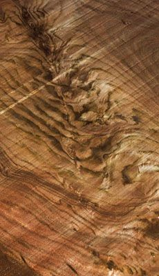 Hearne Hardwoods with over 120 species of domestic and exotic hardwoods in stock, is one of the largest specialty lumber yards in the world. We are a retailer of exotic wood up to inches wide, figured wood, hardwood flooring and millwork services.