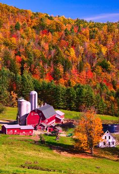 Fall view from our house in Vermont.  This is Hillside Acres Farm -we are above it on top of the mountain