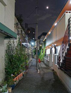 夜散歩のススメ「水窪川暗渠の電柱」 東京都豊島区
