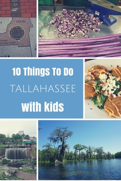 florida best things tallahassee
