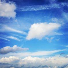 Blue sky, 360 degrees around. 見渡せば空。地平線が低い、さすが信濃川のすぐ横。地元の粋なお姉さんにキティーちゃん柄のビニールシートをおすそ分けいただく。かたじけない。
