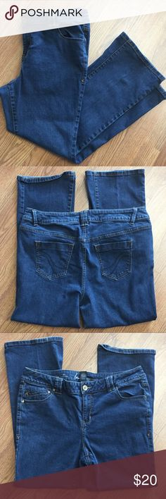 Plus Size Jeans - Lane Bryant Genius Fit by Lane Bryant. Straight fit, Slim boot. Size 18 petite. Good condition Lane Bryant Jeans