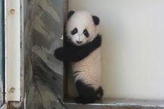 Over-the-shoulder glance - Mei Huan | Flickr - Photo Sharing!
