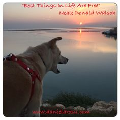 Best things in life are free - Neale Donald Wlalsch