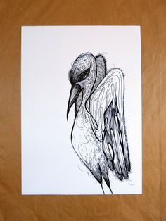 Ciconia Ciconia / ink pen drawing by radanam on Etsy