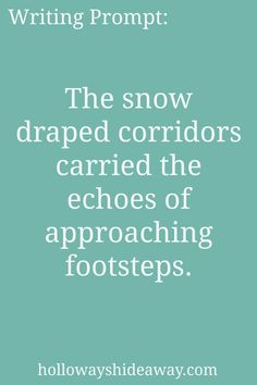 Setting Prompts-Feb2017-The snow draped corridors carried the echoes of approaching footsteps.