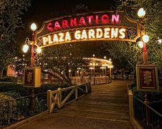 Vintage Disneyland - Carnation Plaza Gardens Opened August Live Music & Dancing Nightly For 5 Decades. Sadly Closed April Fantasy Faire Opened In It's Space Disney Nerd, Disney Parks, Walt Disney World, Disney Disney, Disney Stuff, Disney Magic, Goodbye My Friend, Vintage Disneyland, Hollywood Studios