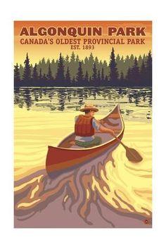Art Print: Algonquin Provincial Park - Ontario, Canada by Lantern Press : Tarzan, Ontario, Artist Canvas, Canvas Art, Grands Lacs, Algonquin Park, Parks Canada, Canada Eh, Destinations