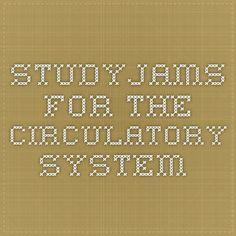 StudyJams for the circulatory system